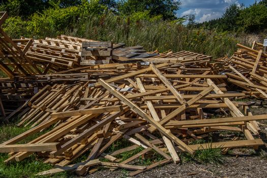 Woodpile on the meadow