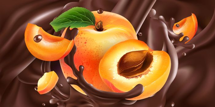 Ripe apricots are added to liquid chocolate. Realistic vector illustration.