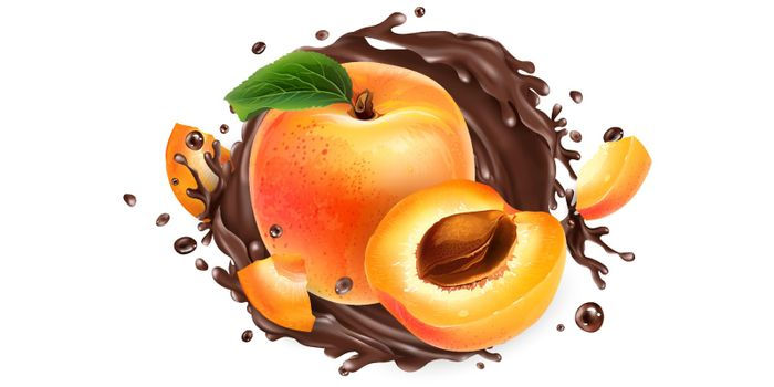Ripe apricots and a splash of liquid chocolate on a white background. Realistic vector illustration.