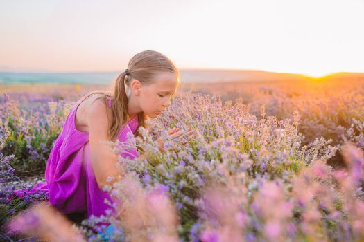 Little adorable girl in lavender flowers field at sunset in purple dress