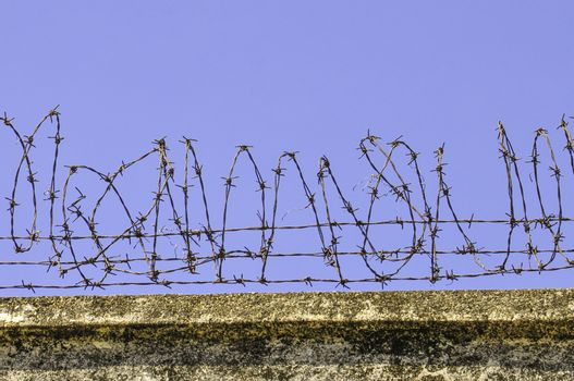 A close up image of a coil of barbed wire against a blue sky background. Part of a defensive protective barrier.