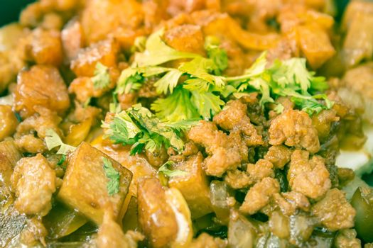 Stir Fried Pork with Onion and Garlic and Black Soy Sauce and Coriander Topping and Tofu with Natural Light in Close Up View in Vintage Tone
