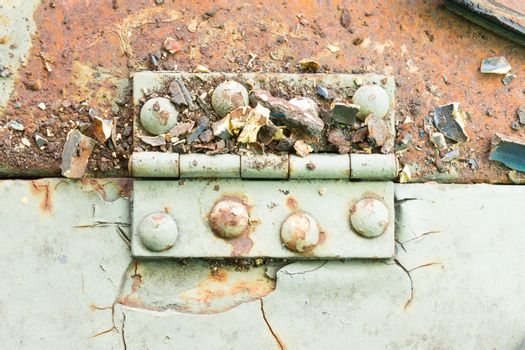 Hinge and Rust and Rivet on Old Light Green Metal Sheet Horizont