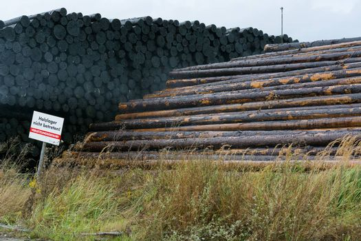 BAD WILDUNGEN, HESSEN, GERMANY - OKTOBER 30, 2018: Wood yard business. Wood stacked outdoors. Concept forest industry environment. Felled tree trunks are sprayed with water to protect them against wood pests