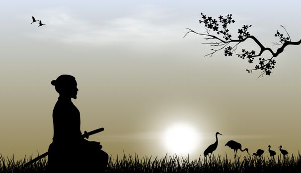 Samurai with a sword sits on the grass against the backdrop of the sky and the sun. Japanese cranes are visible in the distance. Sakura tree branch.