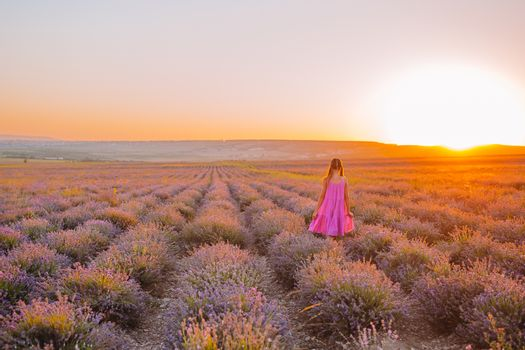 Little adorable girl in lavender flowers field at dawn in purple dress
