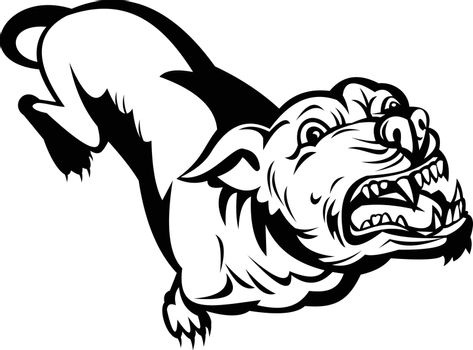 Angry Pit Bull or Pitbull Barking Retro Black and White
