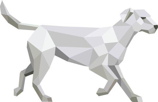 Labrador Walking Low Polygon