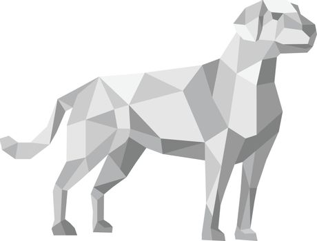 Labrador Standing Low Polygon