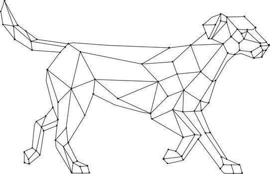 Labrador Walking Wireframe Low Polygon