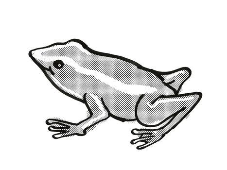 Monte Iberia Eleuth frog Endangered Wildlife Cartoon Mono Line Drawing