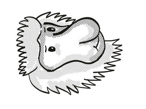 Proboscis Monkey Endangered Wildlife Cartoon Mono Line Drawing