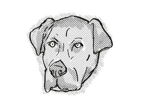 Catahoula Bulldog or American Mastahoulas Dog Breed Cartoon Retro Drawing