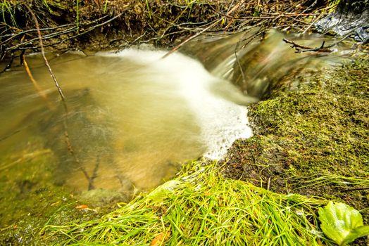 Wild creek falling down in a cascade