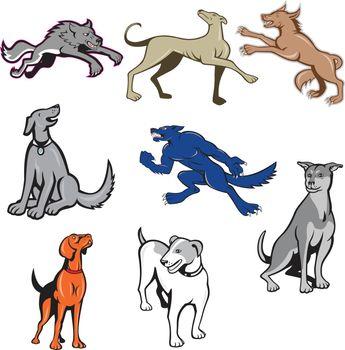 Canine Cartoon Set