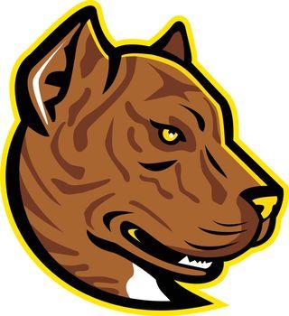 Spanish Bulldog or Spanish Alano Mascot