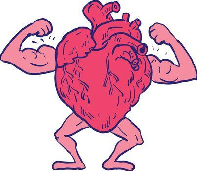 Healthy Heart Flexing Muscle Drawing