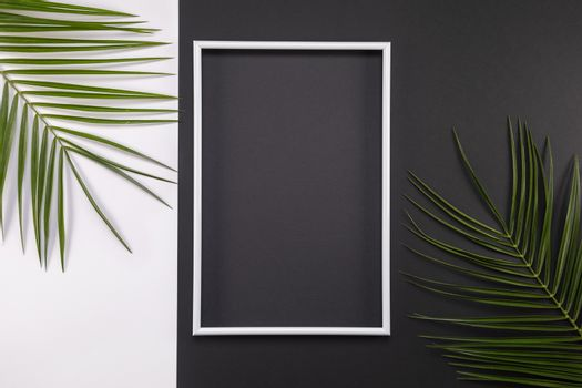 Frame of tropical palm leaves on black and white background. Flat lay, top view, copy space. Summer background, nature. Creative frame background with tropical leaves.