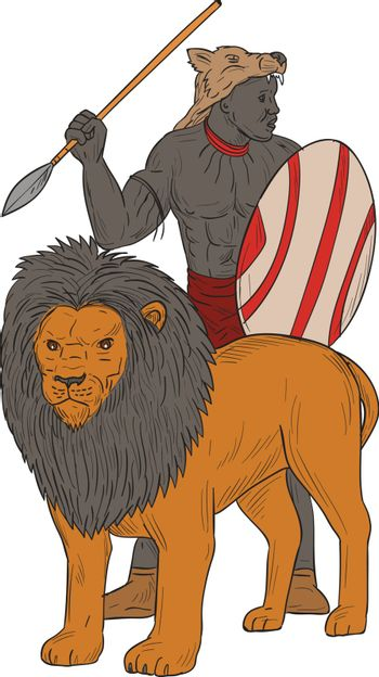 Drawing sketch style illustration of an african warrior holding spear and shield looking to the side hunting with lion facing front set on isolated white background.