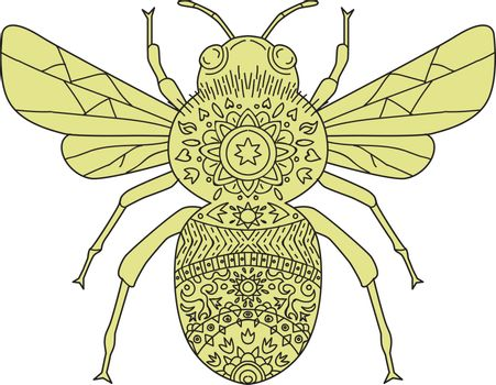 Mandala style illustration of a bumblebee or bumble bee, a member of the genus Bombus, part of Apidae, one of the bee families set on isolated white background.