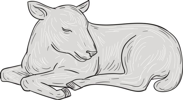 Drawing sketch style illustration of a lamb sleeping set on isolated white background.