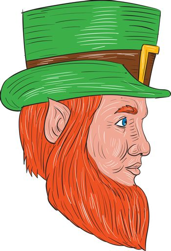 Drawing sketch style illustration of a leprechaun head viewed from the side set on isolated white background.