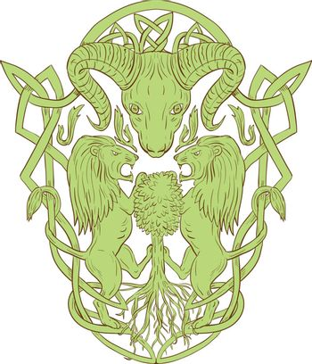 Illustration of stylized bighorn sheep head with two lion supporters climbing on tree with Celtic knot, called Icovellavna, plait work or knotwork woven into unbroken cord design set on isolated white background.
