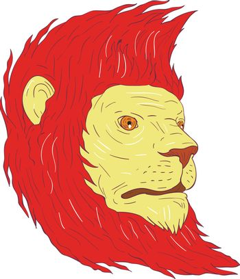 Drawing sketch style illustration of a lion with flowing mane looking to the side set on isolated white background.