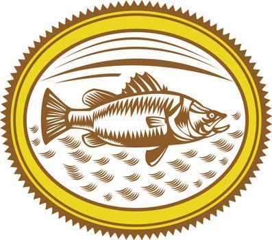 Retro style illustration of Saltwater Barramundi or barramundi, Asian sea bass (Lates calcarifer), a species of catadromous fish set inside Rosette on isolated background.