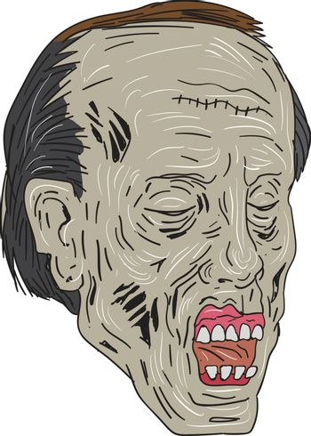 Drawing sketch style illustration of a zombie skull head with eyes closed in a three-quarter view set on isolated white background.