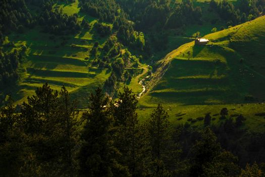 Green landscape in Seturia valley ofAndorra