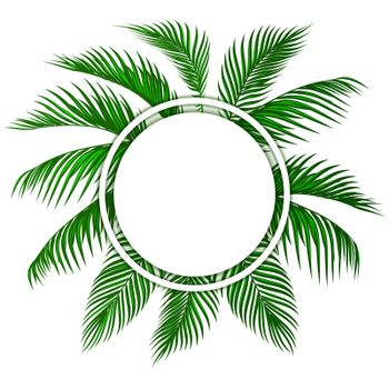 Green tropical palm leaves. Place for advertising, announcements. Vector illustration