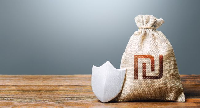 Israeli shekel money bag and protection shield. Ease doing business. Guaranteed deposits insurance compensation. Resistance to economic shock. Financial system stability. Recovery after crisis.