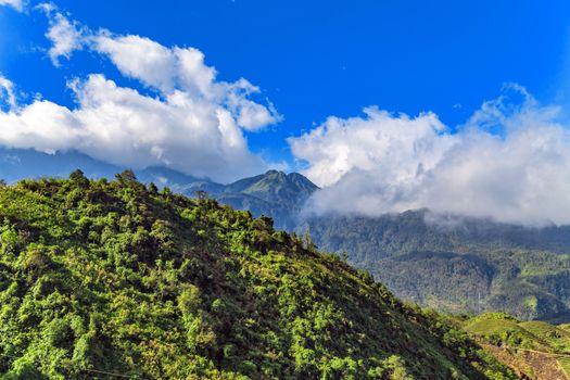 landscape terraces green grass blue sky cloud of Sapa Vietnam.