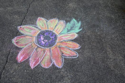 Sidewalk chalk art of colorful daisy.