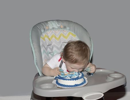 Toddler dives face first into a smash cake on his first birthday.