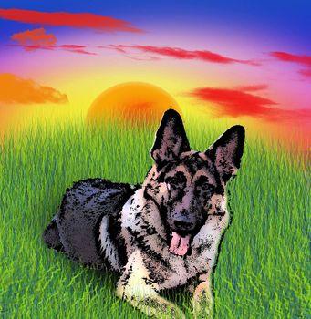 Illustration. German shepherd dog lying on green grass. Sunset