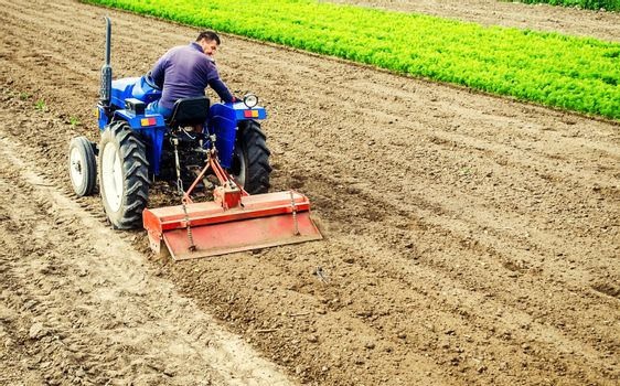 Farmer drives a tractor with a milling machine. Loosens, grind and mix soil on plantation field. Field preparation for new crop planting. Loosening surface, cultivating the land. Farming, agriculture.