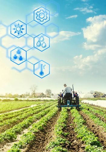 A farmer drives a tractor across potato plantation field and hexagons with innovations. Science of agronomy. Improvement in quality and yield growth. Reducing the impact on the environment.