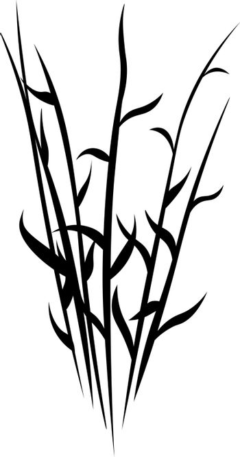 isolated stencil of black silhouette of meadow or swamp grass stems