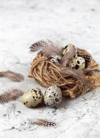 Easter quail eggs in nest on bright background. Space for text