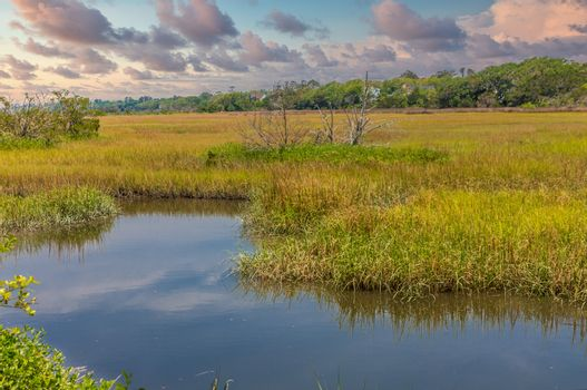 A river running through a salt water wetland marsh at high tide