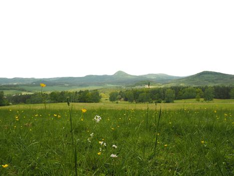 green blooming meadow with the hills on isolated white background