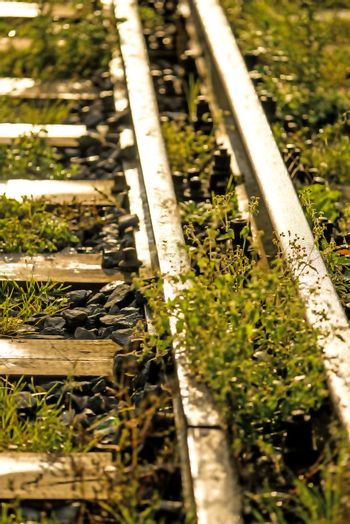 old rails in soft autumnal morning sun