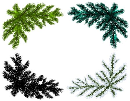 Set. Blue, black, white and green Christmas tree branches on an isolated white background. Vector illustration
