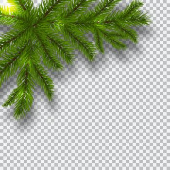 Green branches of a Christmas tree on a checker background. Corner with shadow. Christmas decorations. Vector illustration