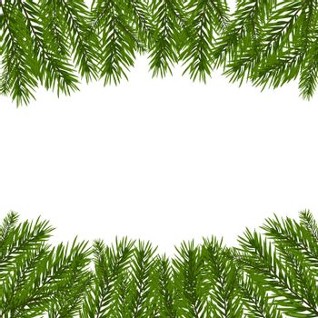 Green, realistic fir branches. Fir branches with the top and bottom of the picture. Isolated on white background. Christmas vector illustration