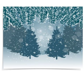 New Year card. Blue, realistic fir branches with snow in the cold winter forest in the background. Christmas vector illustration