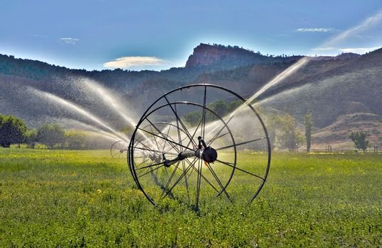 Irrigation System in green field.