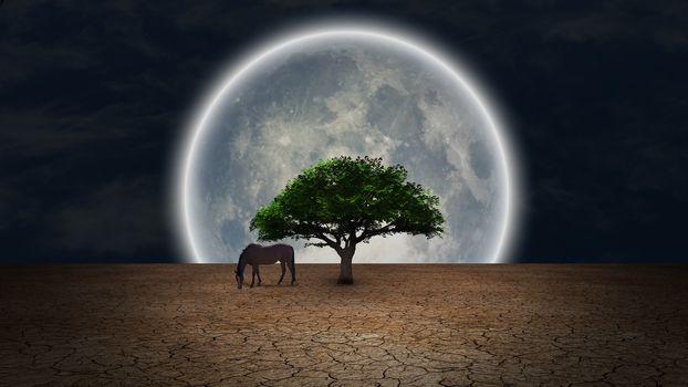 Surrealism. Horse grazes near green tree in arid land. Full moon at the horizon.